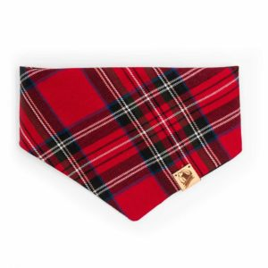 Woodsdog Whistler Collection Waddington Bandana