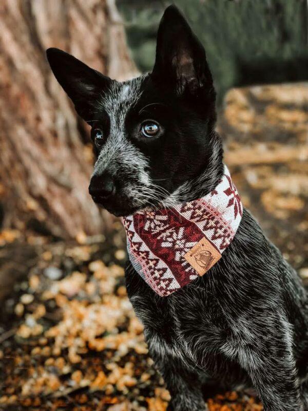 Woodsdog Briar Bandana Jokkmokk